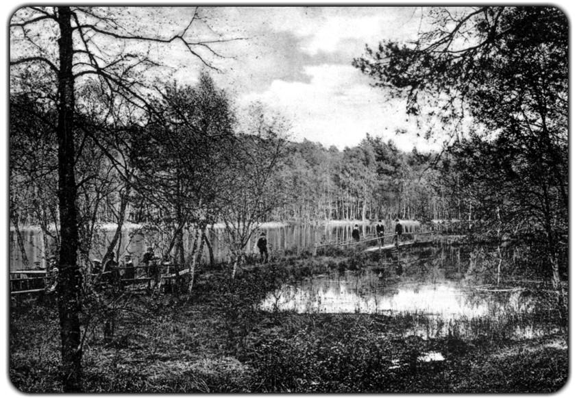 Waren 1910-4
