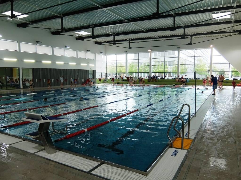 Schwimm