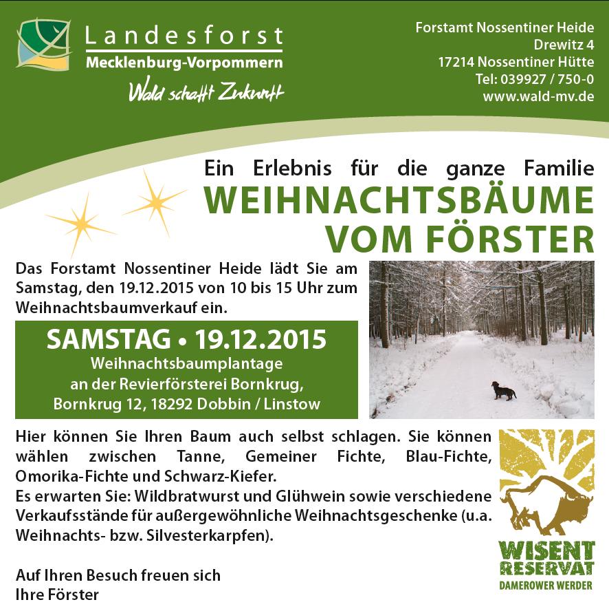 Weihnachtsbaumverkauf forstamt nossentiner heide wir - Obi weihnachtsbaumverkauf ...