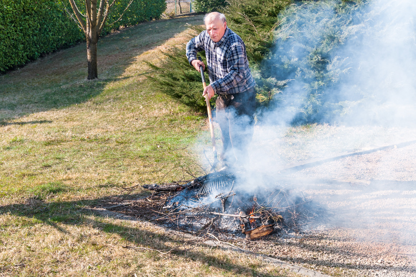Senior man is burning dry branches in the garden